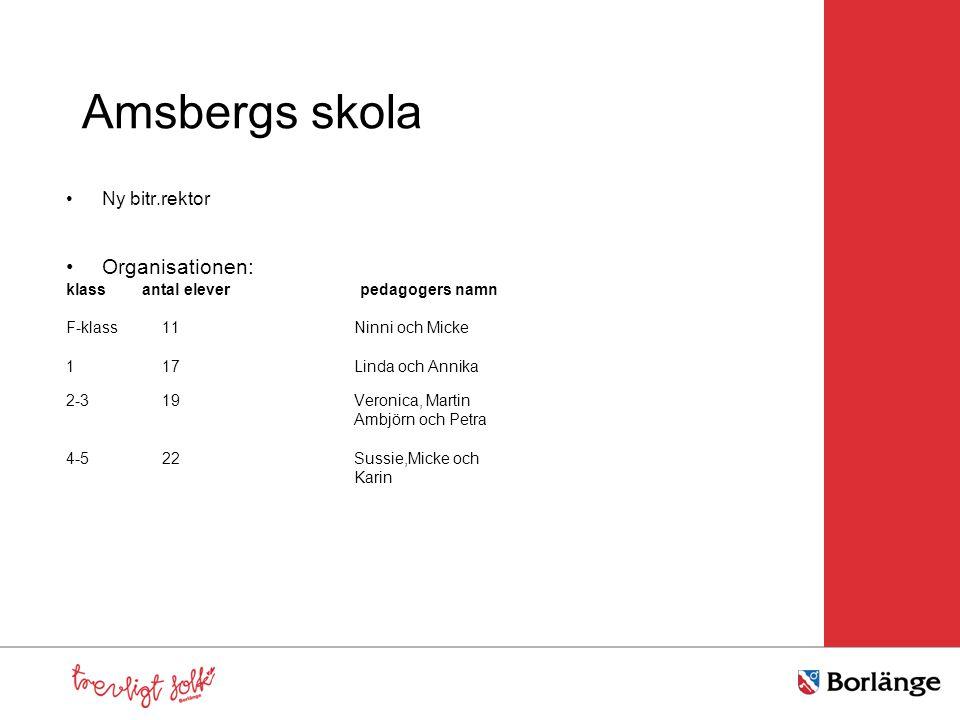 Amsbergs skola •Ny bitr.rektor •Organisationen: klass antal elever pedagogers namn F-klass11 Ninni och Micke 117Linda och Annika 2-319Veronica, Martin