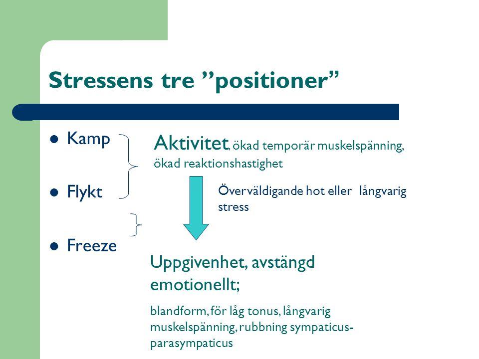 Stressens tre positioner  Kamp  Flykt  Freeze Aktivitet, ökad temporär muskelspänning, ökad reaktionshastighet Uppgivenhet, avstängd emotionellt; blandform, för låg tonus, långvarig muskelspänning, rubbning sympaticus- parasympaticus Överväldigande hot eller långvarig stress