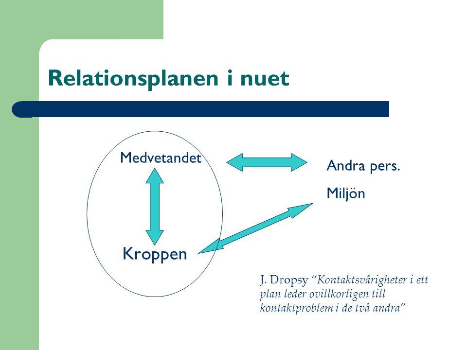 Relationsplanen i nuet Medvetandet Kroppen Andra pers.