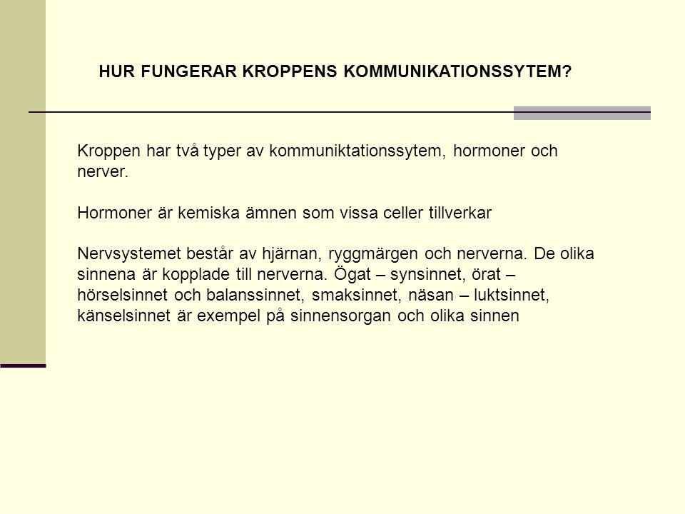 HUR FUNGERAR KROPPENS KOMMUNIKATIONSSYTEM.