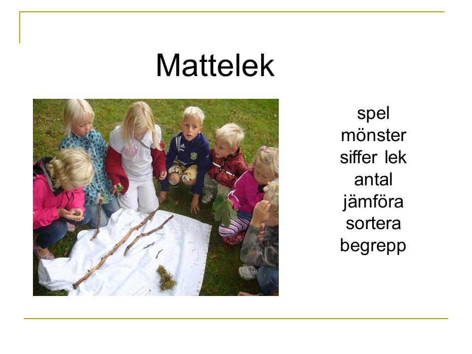 Mattelek spel mönster siffer lek antal jämföra sortera begrepp