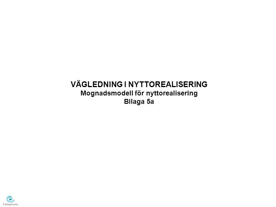 VÄGLEDNING I NYTTOREALISERING Mognadsmodell för nyttorealisering Bilaga 5a