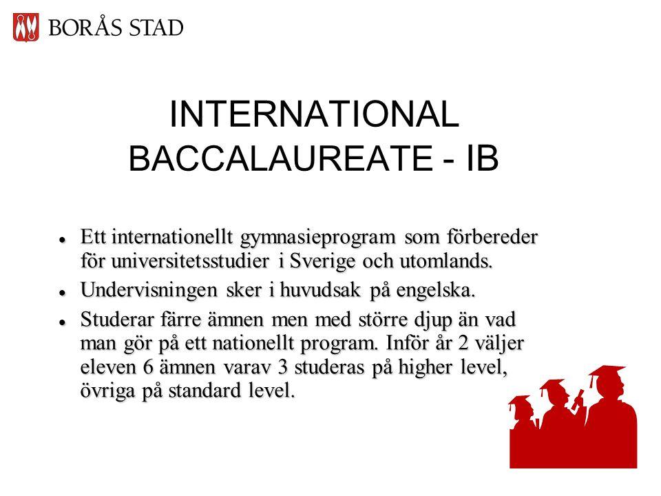 INTERNATIONAL BACCALAUREATE - IB  Ett internationellt gymnasieprogram som förbereder för universitetsstudier i Sverige och utomlands.