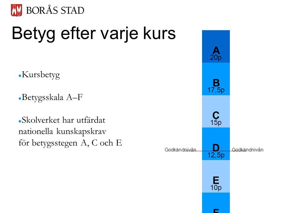 Betyg efter varje kurs  Kursbetyg  Betygsskala A–F  Skolverket har utfärdat nationella kunskapskrav för betygsstegen A, C och E A 20p B 17,5p C 15p D 12,5p E 10p F 0 p ------ Godkändnivån