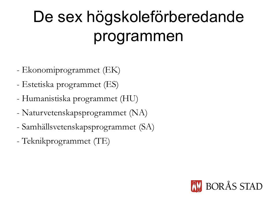 De sex högskoleförberedande programmen - Ekonomiprogrammet (EK) - Estetiska programmet (ES) - Humanistiska programmet (HU) - Naturvetenskapsprogrammet (NA) - Samhällsvetenskapsprogrammet (SA) - Teknikprogrammet (TE)