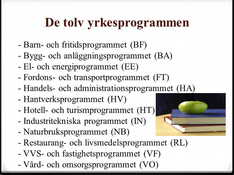 De tolv yrkesprogrammen - Barn- och fritidsprogrammet (BF) - Bygg- och anläggningsprogrammet (BA) - El- och energiprogrammet (EE) - Fordons- och trans