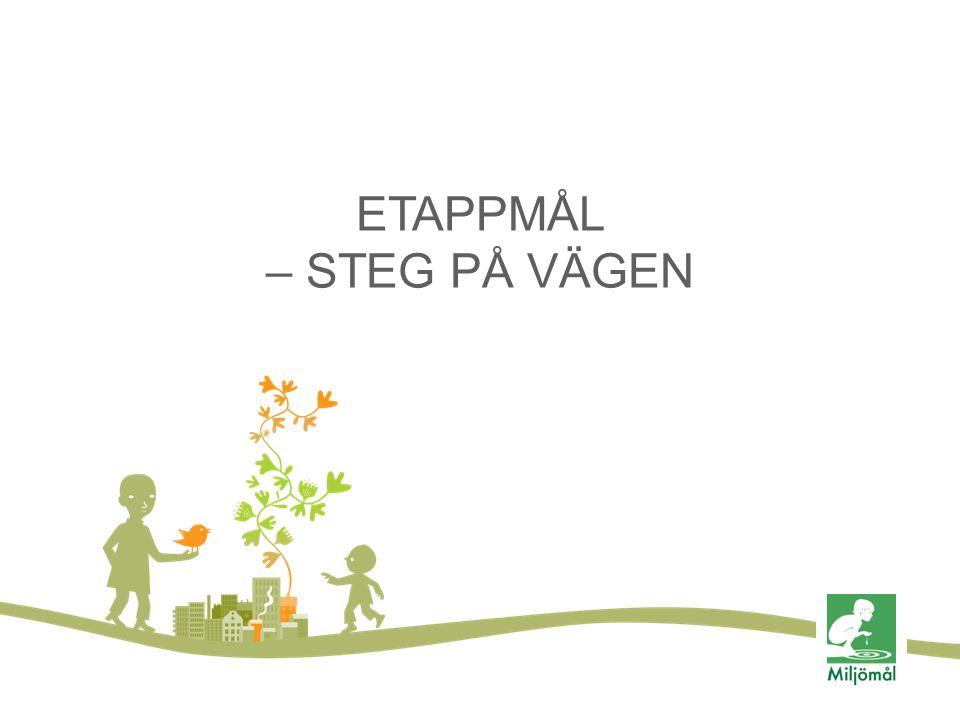 ETAPPMÅL – STEG PÅ VÄGEN