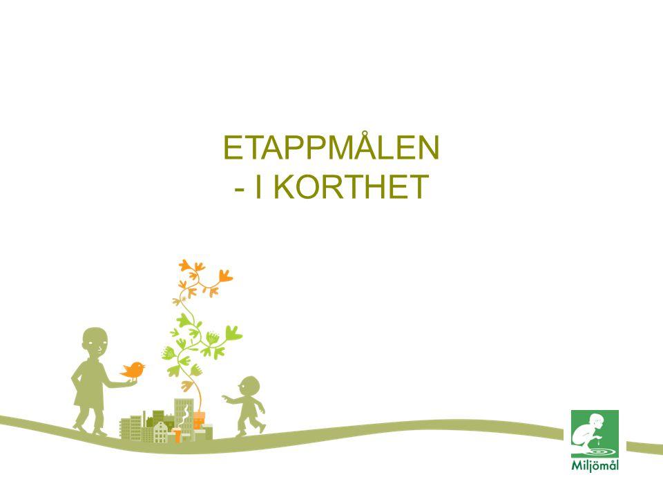 ETAPPMÅLEN - I KORTHET