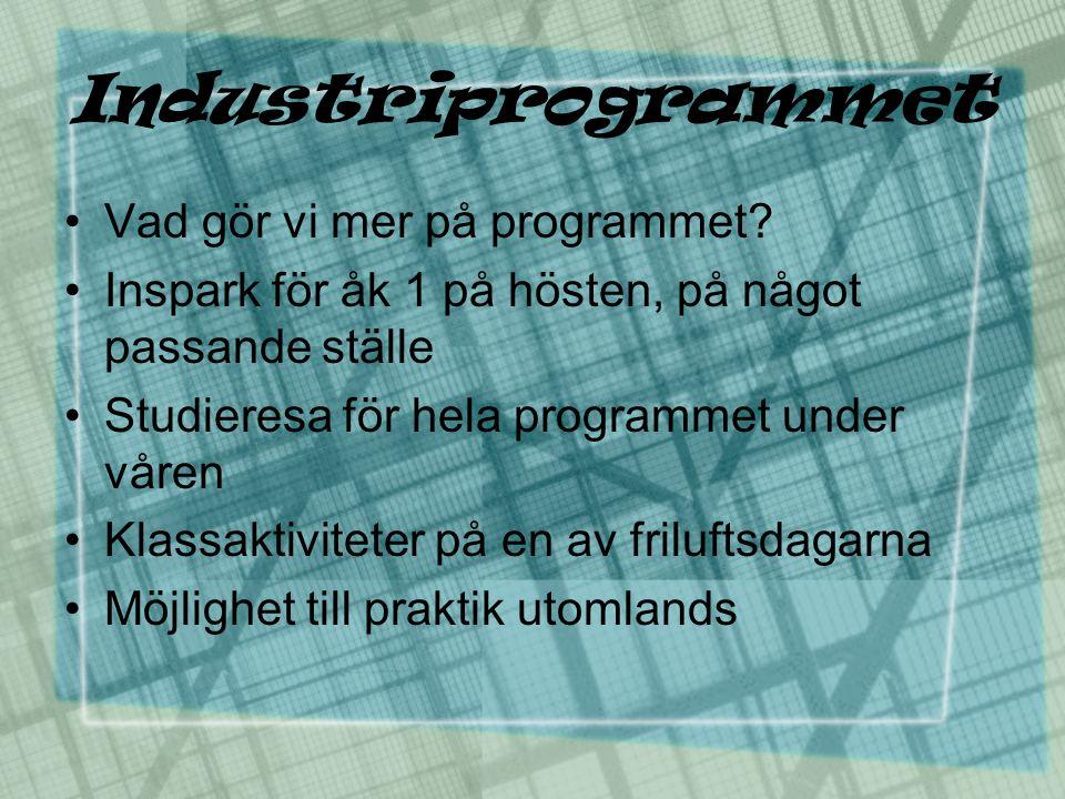 Industriprogrammet •Vad gör vi mer på programmet? •Inspark för åk 1 på hösten, på något passande ställe •Studieresa för hela programmet under våren •K