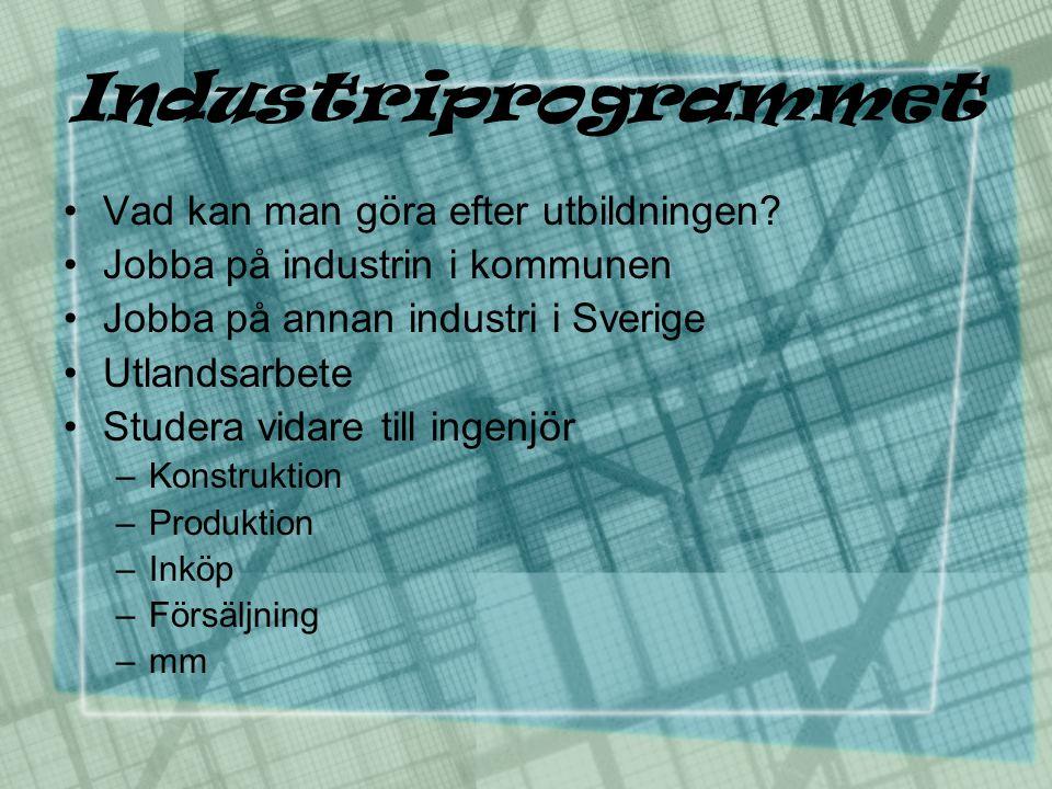Industriprogrammet •Vad kan man göra efter utbildningen? •Jobba på industrin i kommunen •Jobba på annan industri i Sverige •Utlandsarbete •Studera vid