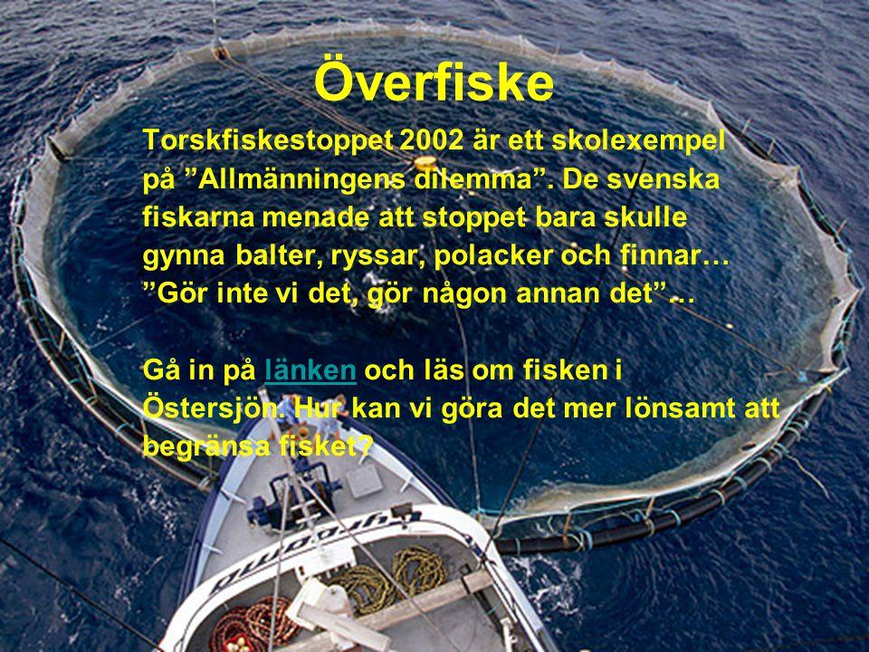 Överfiske Torskfiskestoppet 2002 är ett skolexempel på Allmänningens dilemma .