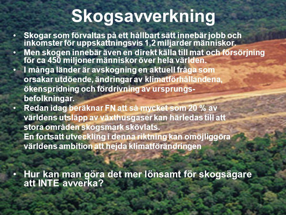 Skogsavverkning •Skogar som förvaltas på ett hållbart sätt innebär jobb och inkomster för uppskattningsvis 1,2 miljarder människor.