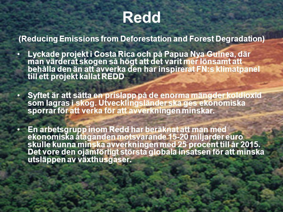 Redd (Reducing Emissions from Deforestation and Forest Degradation) •Lyckade projekt i Costa Rica och på Papua Nya Guinea, där man värderat skogen så högt att det varit mer lönsamt att behålla den än att avverka den har inspirerat FN:s klimatpanel till ett projekt kallat REDD •Syftet är att sätta en prislapp på de enorma mängder koldioxid som lagras i skog.