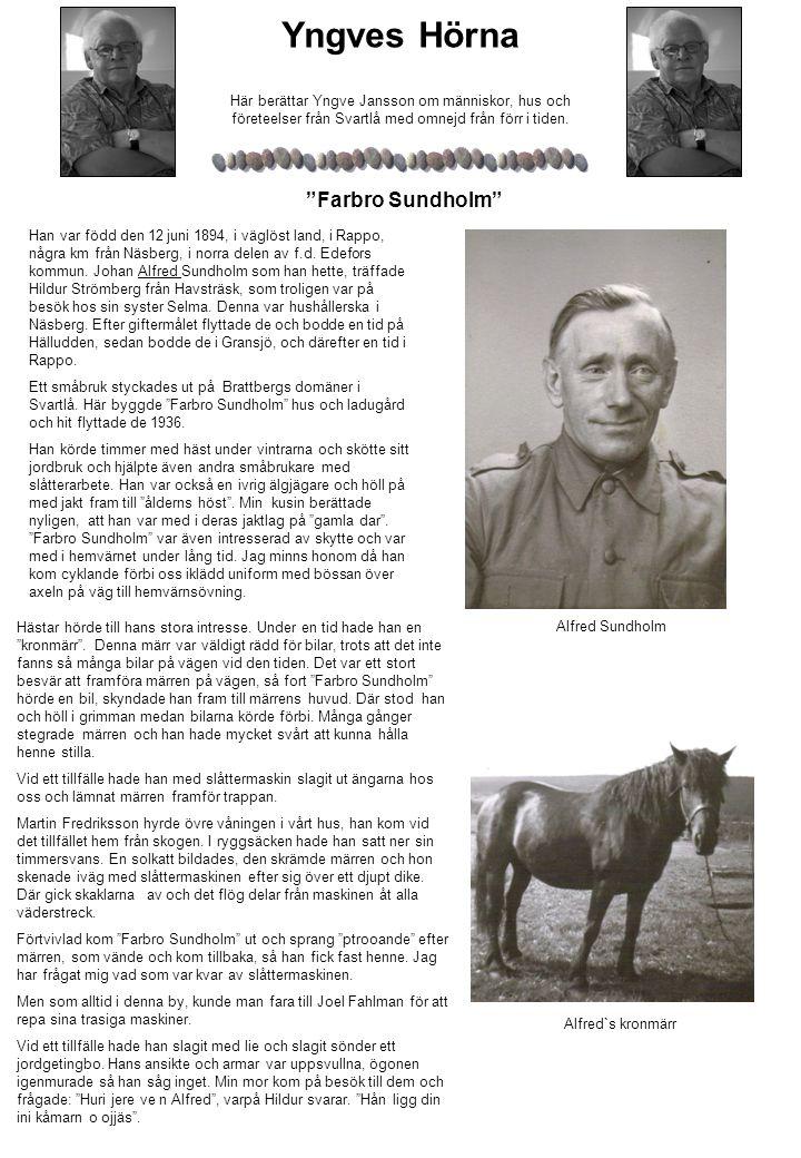 Hästar hörde till hans stora intresse.Under en tid hade han en kronmärr .