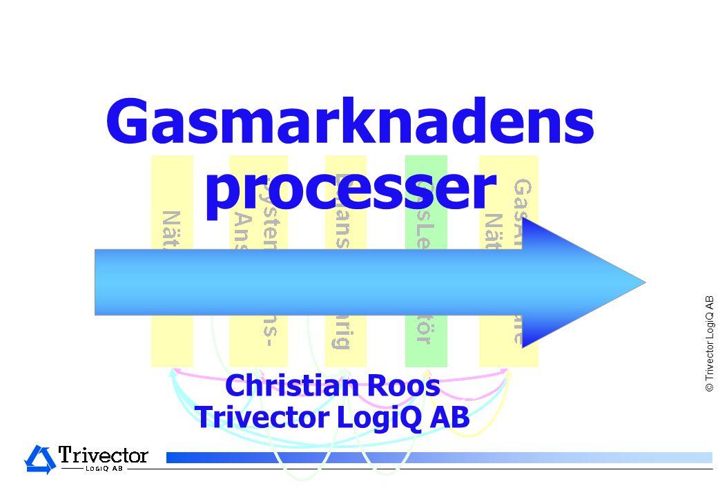 © Trivector LogiQ AB Gasmarknadens processer Christian Roos Trivector LogiQ AB