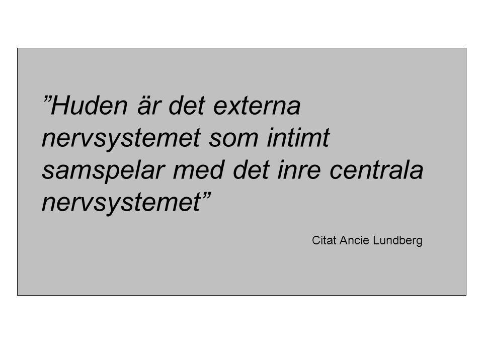 """""""Huden är det externa nervsystemet som intimt samspelar med det inre centrala nervsystemet"""" Citat Ancie Lundberg"""