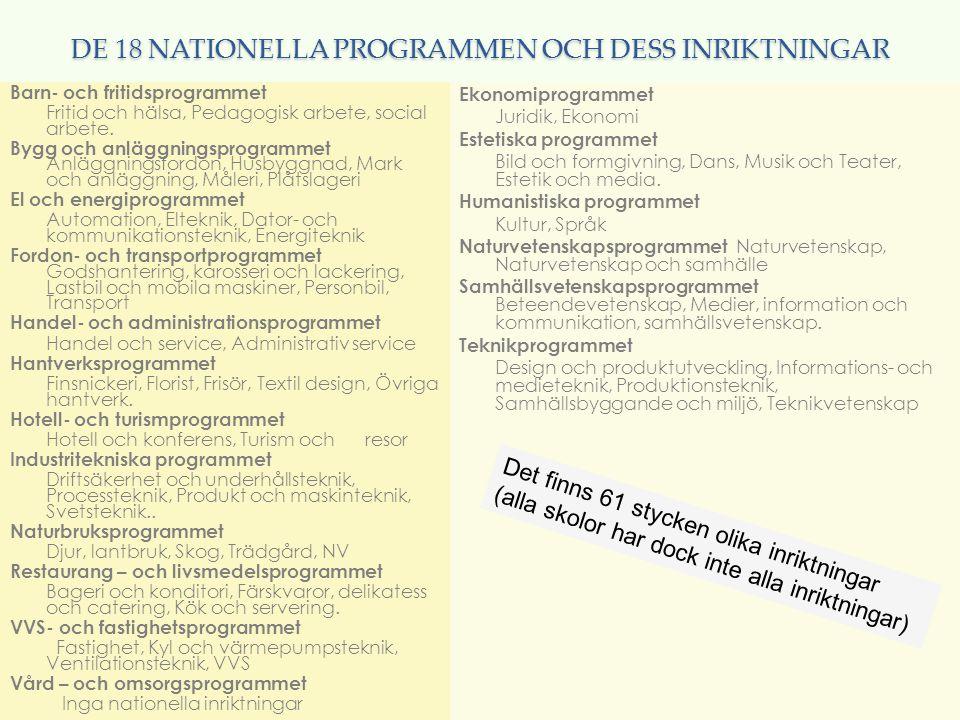 DE 18 NATIONELLA PROGRAMMEN OCH DESS INRIKTNINGAR Barn- och fritidsprogrammet Fritid och hälsa, Pedagogisk arbete, social arbete. Bygg och anläggnings