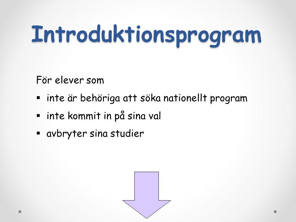 För elever som  inte är behöriga att söka nationellt program  inte kommit in på sina val  avbryter sina studier Introduktionsprogram