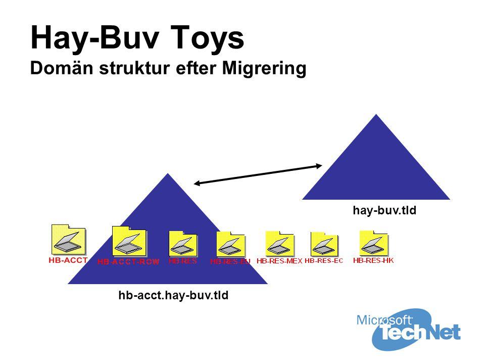 Hay-Buv Toys Domän struktur efter Migrering hay-buv.tld hb-acct.hay-buv.tld