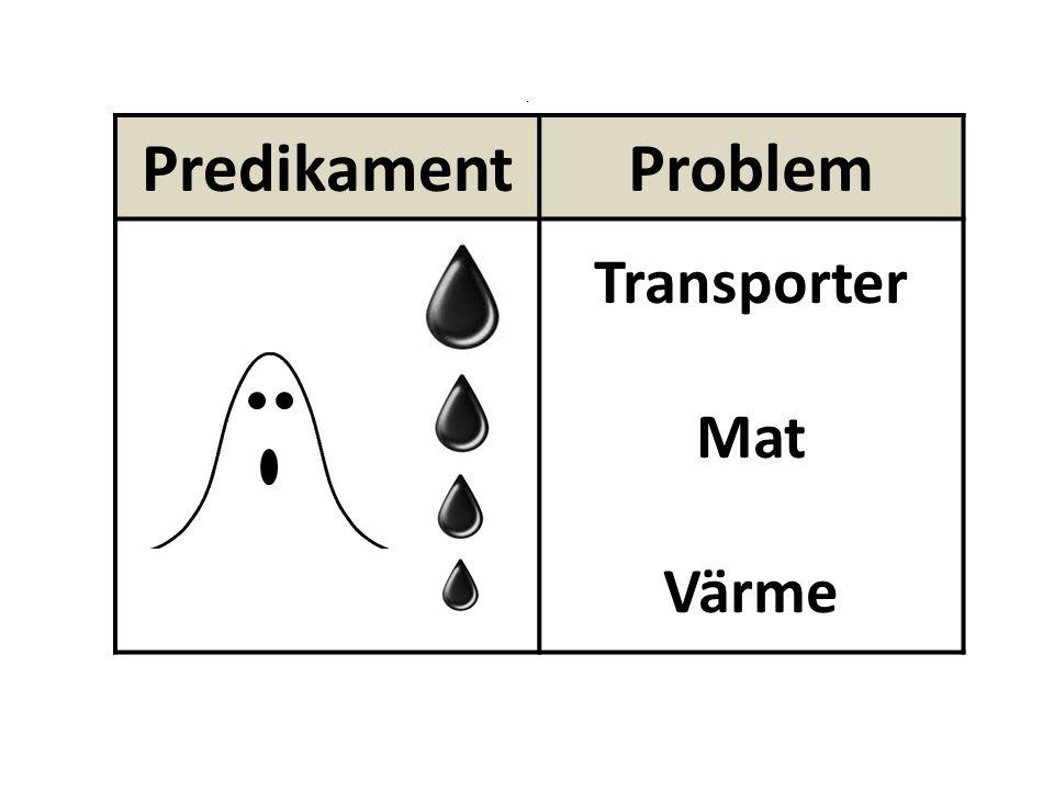 PredikamentProblem Transporter Mat Värme.