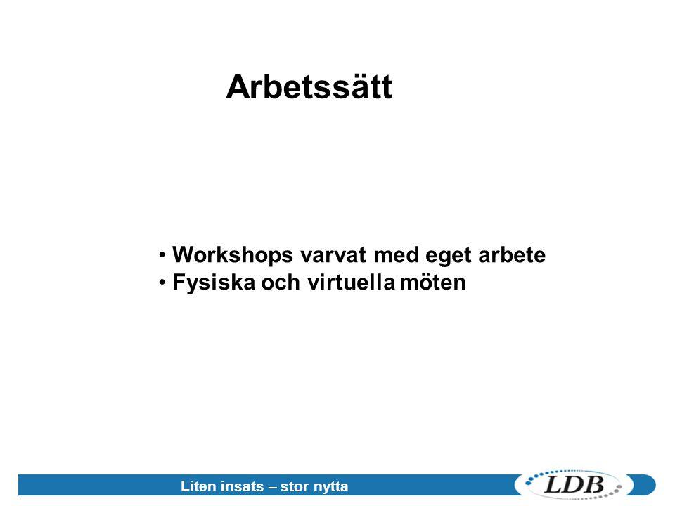 Liten insats – stor nytta • Workshops varvat med eget arbete • Fysiska och virtuella möten Arbetssätt