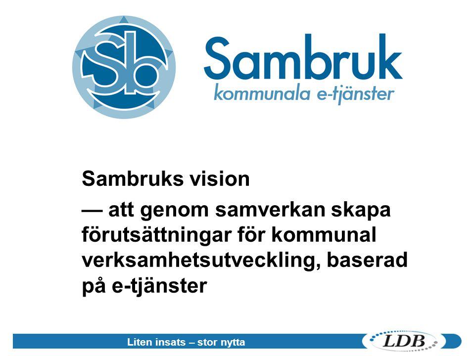 Liten insats – stor nytta Sambruks vision — att genom samverkan skapa förutsättningar för kommunal verksamhetsutveckling, baserad på e-tjänster