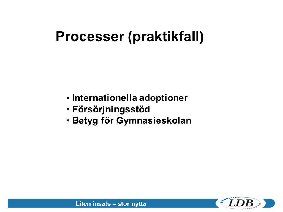 Liten insats – stor nytta • Internationella adoptioner • Försörjningsstöd • Betyg för Gymnasieskolan Processer (praktikfall)