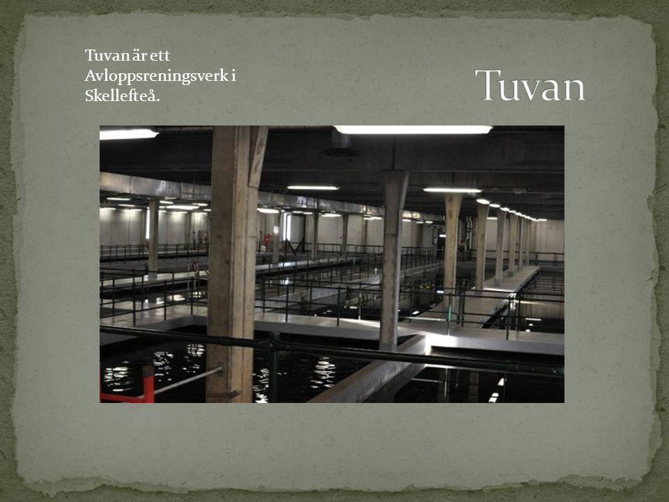 Tuvan är ett Avloppsreningsverk i Skellefteå.