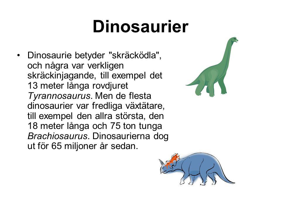 Dinosaurier •Dinosaurie betyder