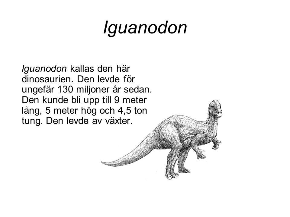 Iguanodon Iguanodon kallas den här dinosaurien. Den levde för ungefär 130 miljoner år sedan. Den kunde bli upp till 9 meter lång, 5 meter hög och 4,5