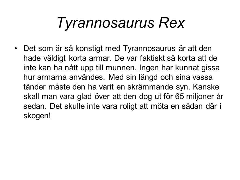 Tyrannosaurus Rex •Det som är så konstigt med Tyrannosaurus är att den hade väldigt korta armar. De var faktiskt så korta att de inte kan ha nått upp
