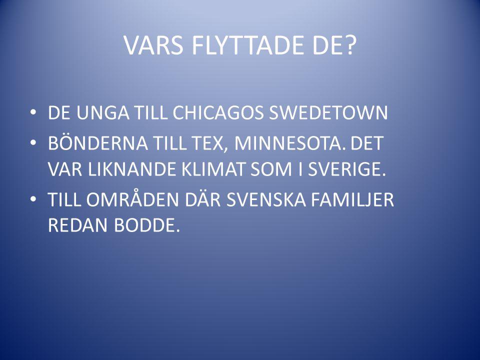 VARS FLYTTADE DE.• DE UNGA TILL CHICAGOS SWEDETOWN • BÖNDERNA TILL TEX, MINNESOTA.