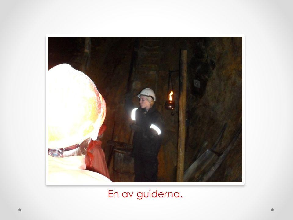 En av guiderna.