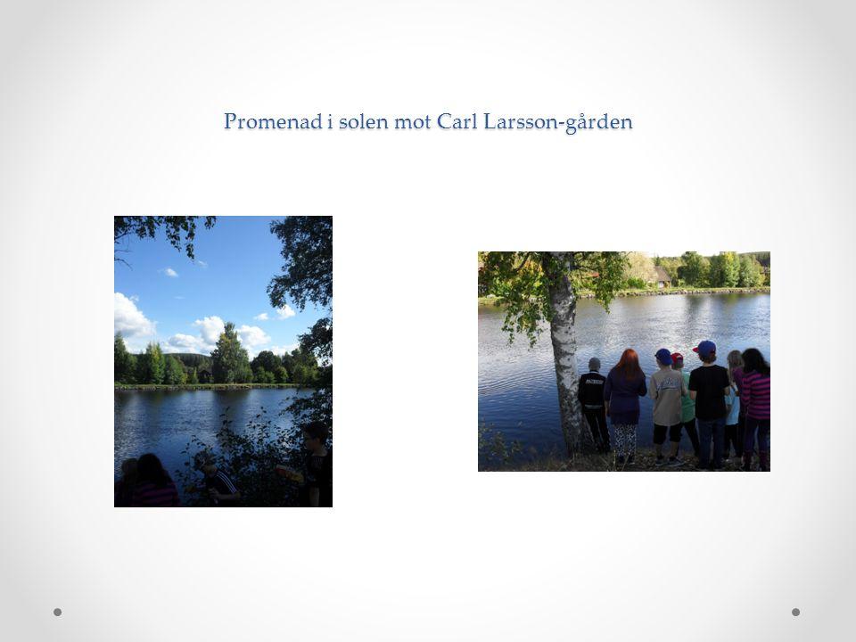 Promenad i solen mot Carl Larsson-gården