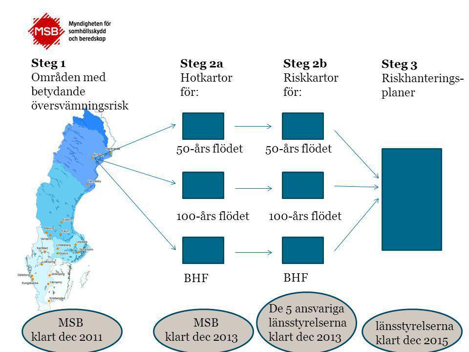 Steg 1 Områden med betydande översvämningsrisk Steg 2a Hotkartor för: Steg 2b Riskkartor för: Steg 3 Riskhanterings- planer 50-års flödet 100-års flöd
