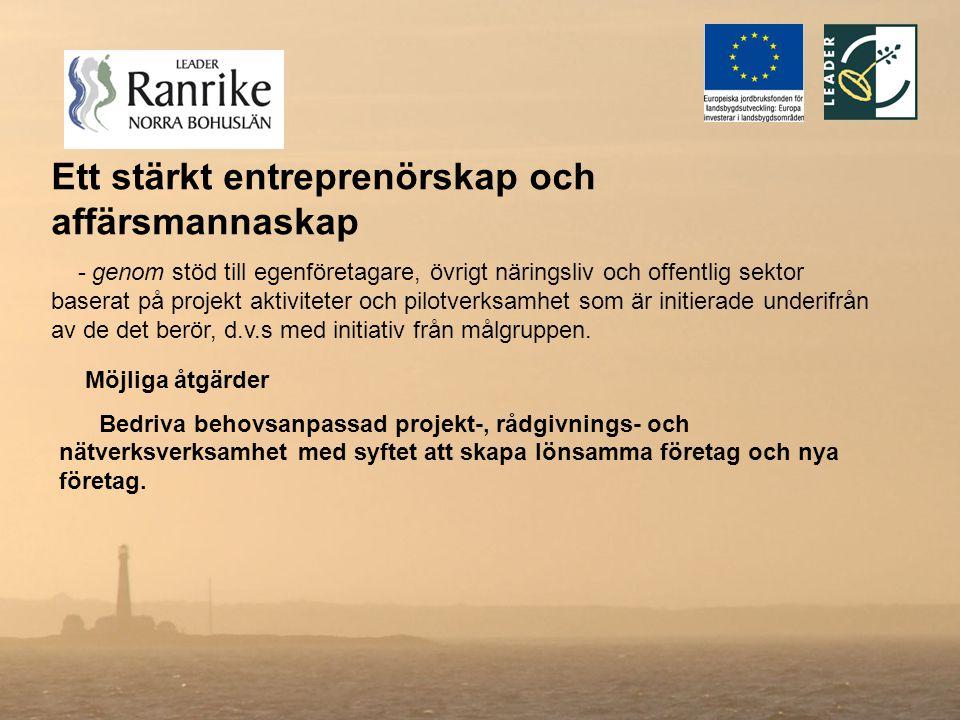 Ett stärkt entreprenörskap och affärsmannaskap - genom stöd till egenföretagare, övrigt näringsliv och offentlig sektor baserat på projekt aktiviteter