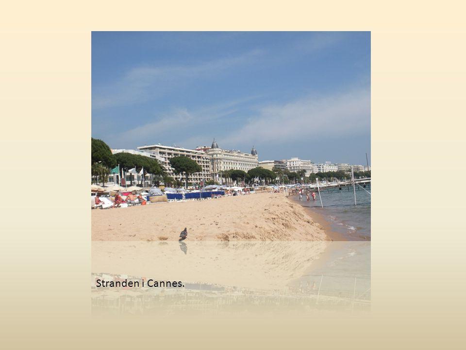 Stranden i Cannes.