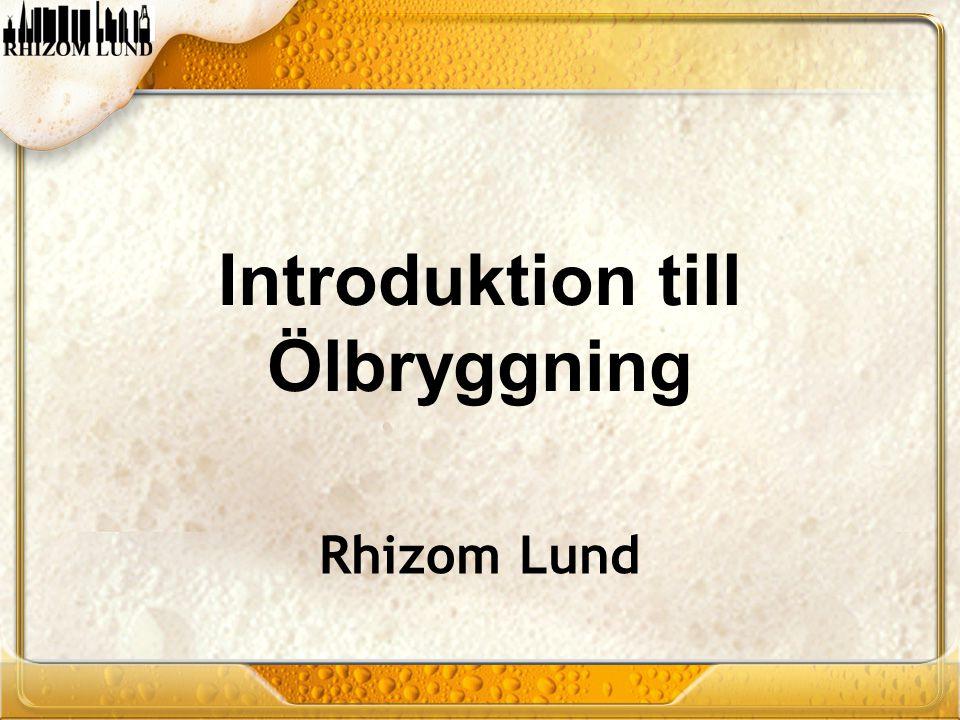 Introduktion till Ölbryggning Rhizom Lund
