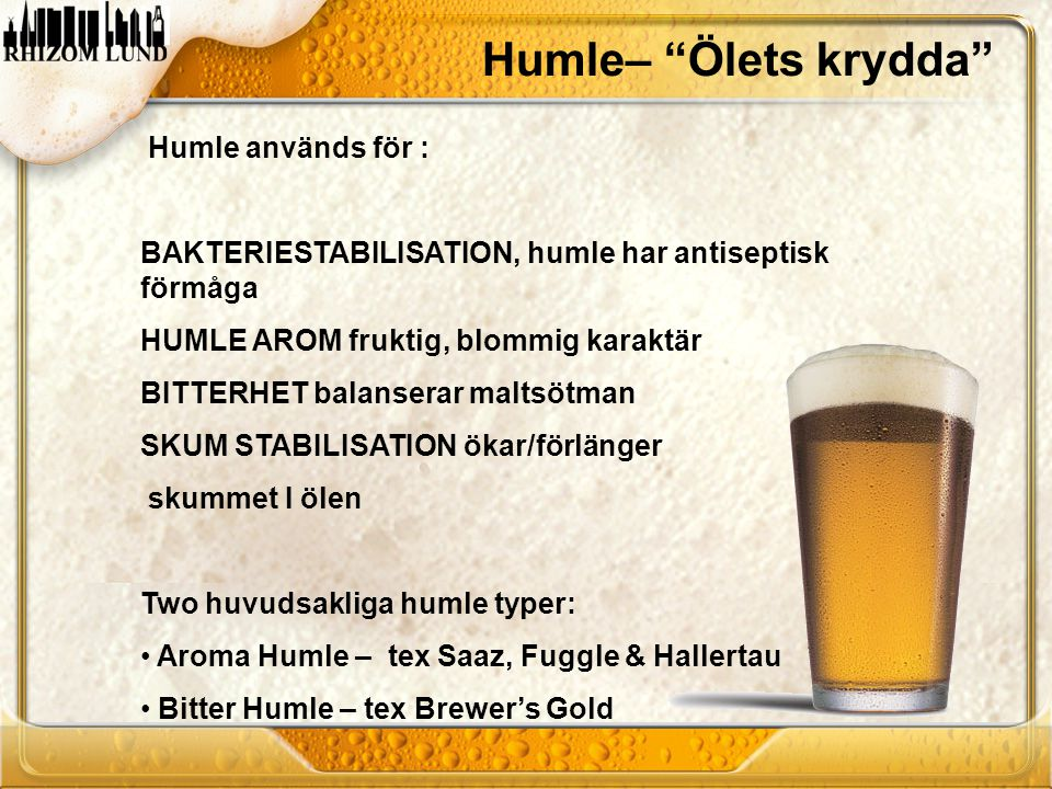 """Humle– """"Ölets krydda"""" Humle används för : BAKTERIESTABILISATION, humle har antiseptisk förmåga HUMLE AROM fruktig, blommig karaktär BITTERHET balanser"""