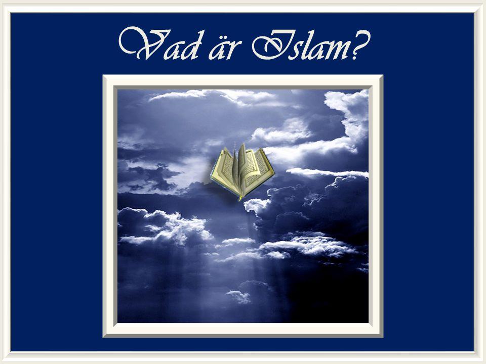 Syftet med föreläsningen Syftet med den här föreläsningen är att lära ut grundkunskaper om Islam som religion och vad Islam egentligen är, utifrån angivna källor.