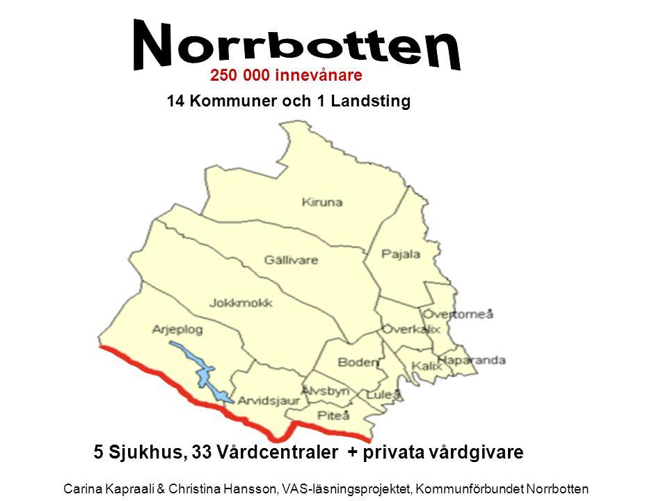 5 Sjukhus, 33 Vårdcentraler + privata vårdgivare 250 000 innevånare 14 Kommuner och 1 Landsting Carina Kapraali & Christina Hansson, VAS-läsningsproje