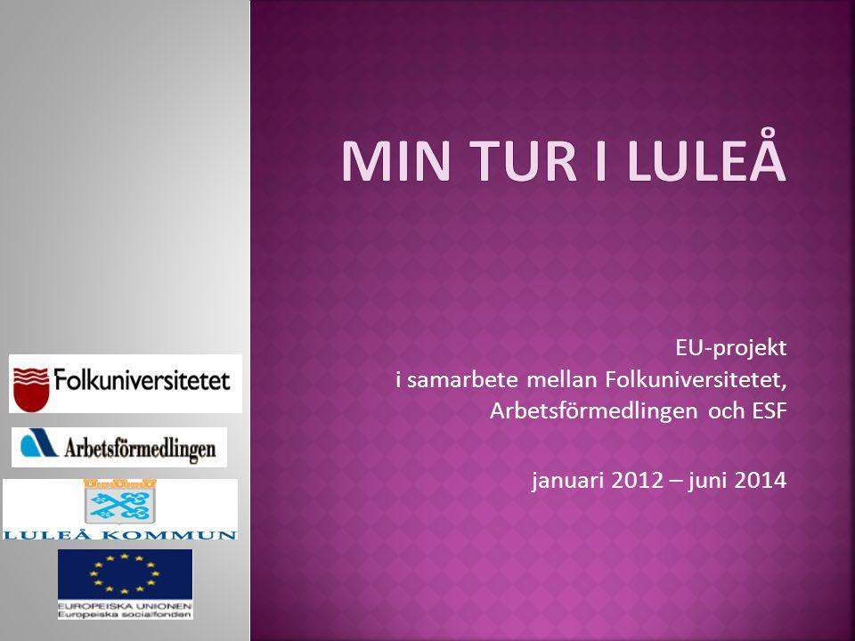 EU-projekt i samarbete mellan Folkuniversitetet, Arbetsförmedlingen och ESF januari 2012 – juni 2014
