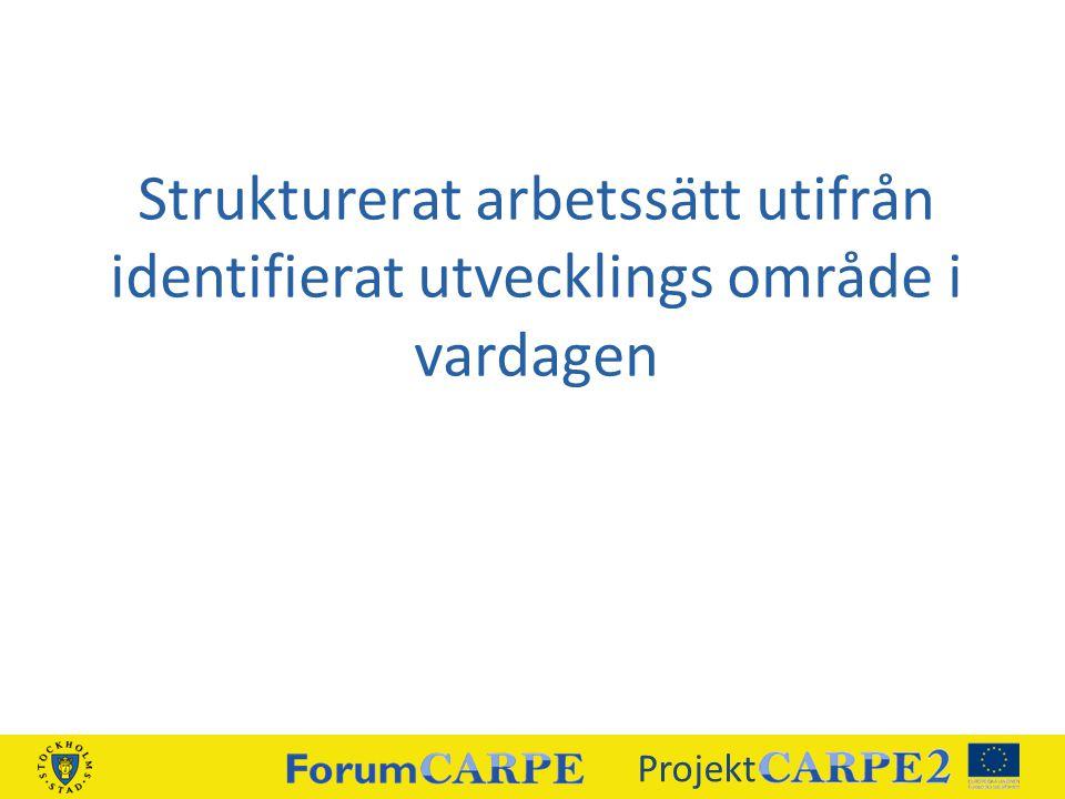 Strukturerat arbetssätt utifrån identifierat utvecklings område i vardagen Projekt