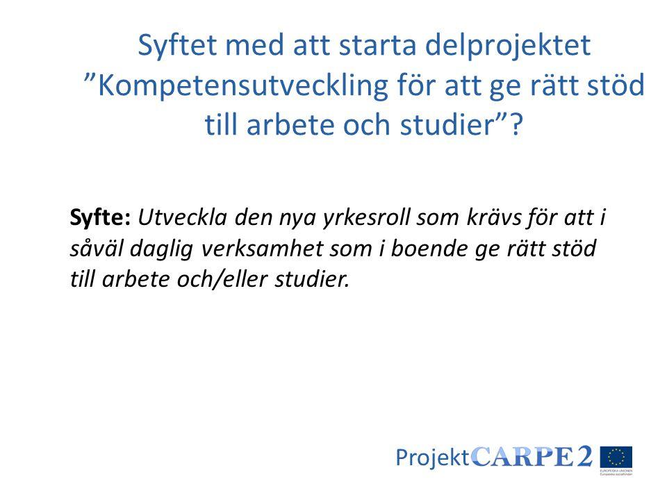 Projekt Syfte: Utveckla den nya yrkesroll som krävs för att i såväl daglig verksamhet som i boende ge rätt stöd till arbete och/eller studier. Syftet