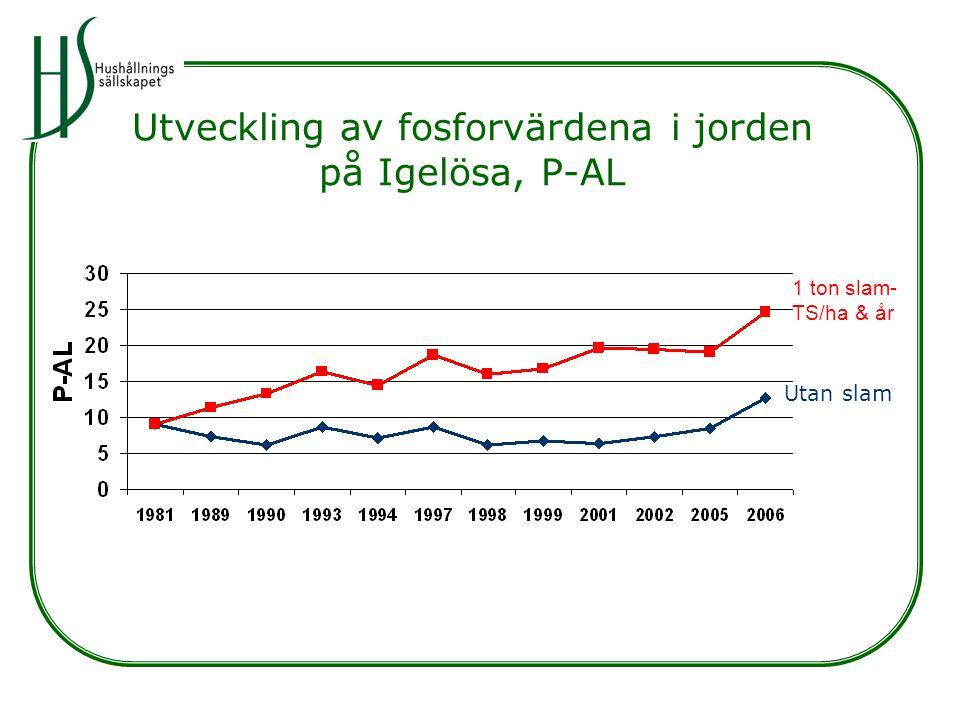 Utveckling av fosforvärdena i jorden på Igelösa, P-AL Utan slam 1 ton slam- TS/ha & år