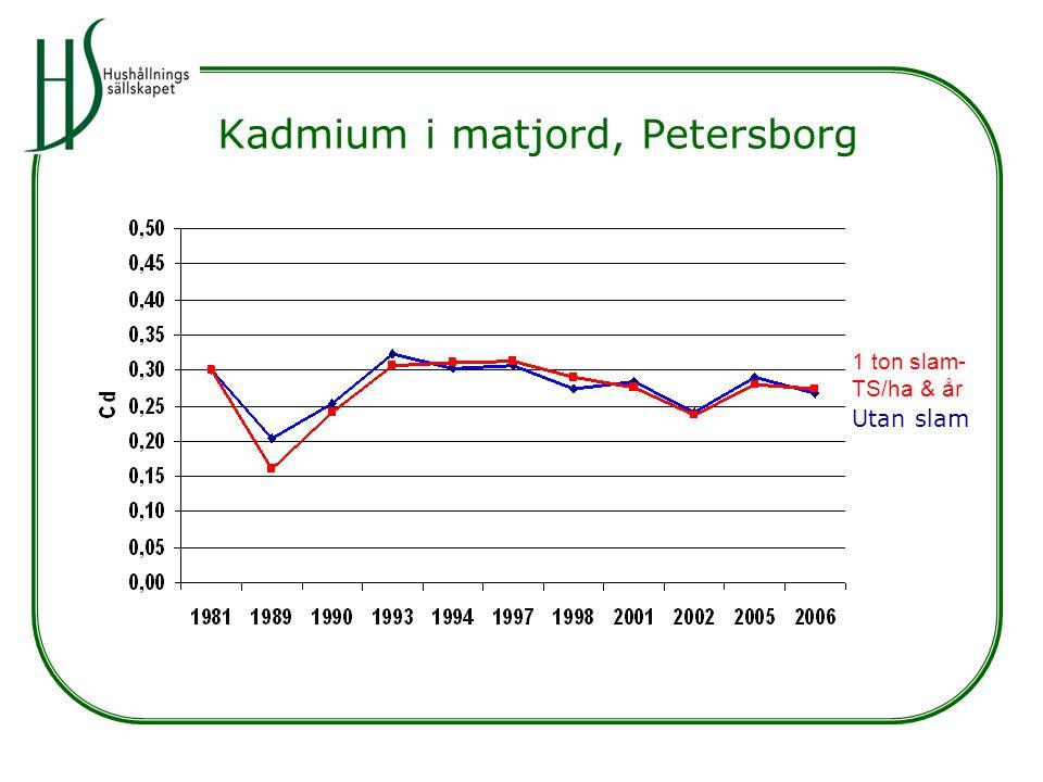Kadmium i matjord, Petersborg Utan slam 1 ton slam- TS/ha & år
