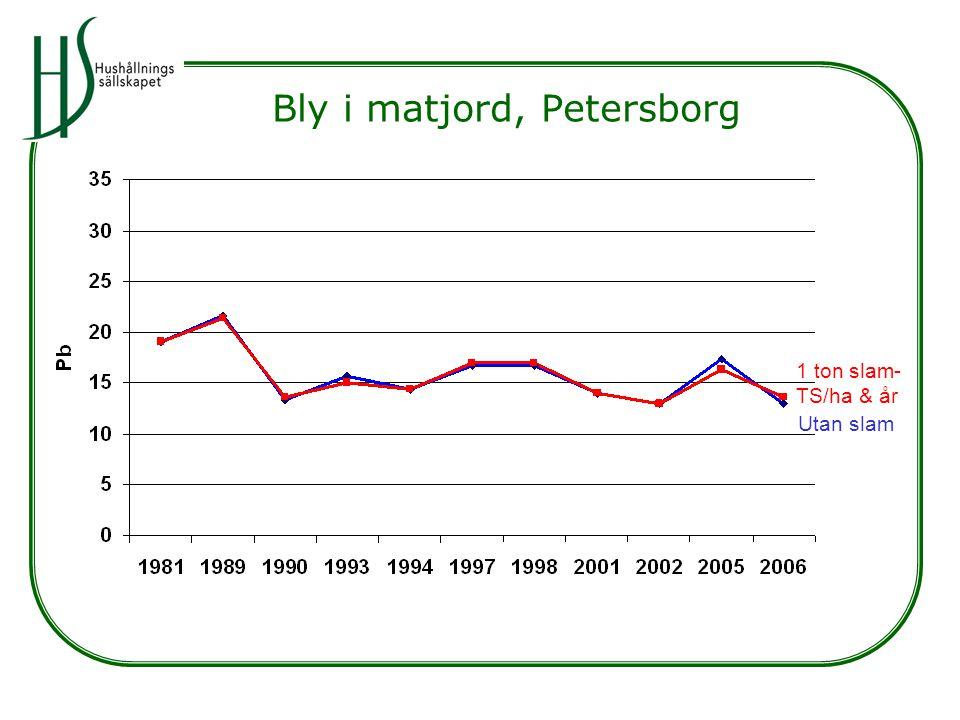 Bly i matjord, Petersborg Utan slam 1 ton slam- TS/ha & år