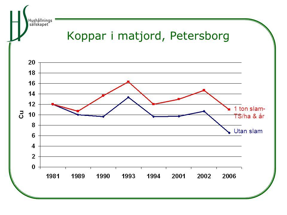 Koppar i matjord, Petersborg Utan slam 1 ton slam- TS/ha & år