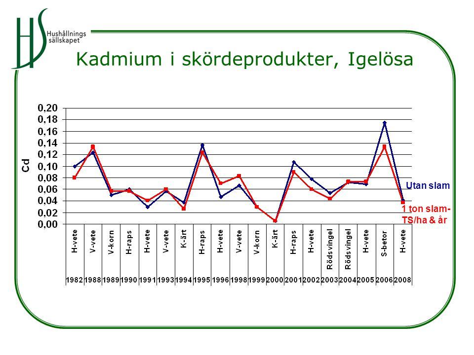 Kadmium i skördeprodukter, Igelösa Utan slam 1 ton slam- TS/ha & år