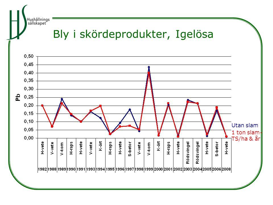 Bly i skördeprodukter, Igelösa Utan slam 1 ton slam- TS/ha & år